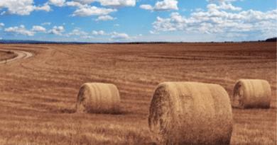 TARIMDA GELİŞME YAPALIM /// Let's Improve in Agriculture