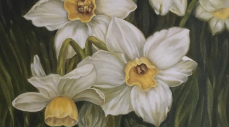 Nergis / Daffodil