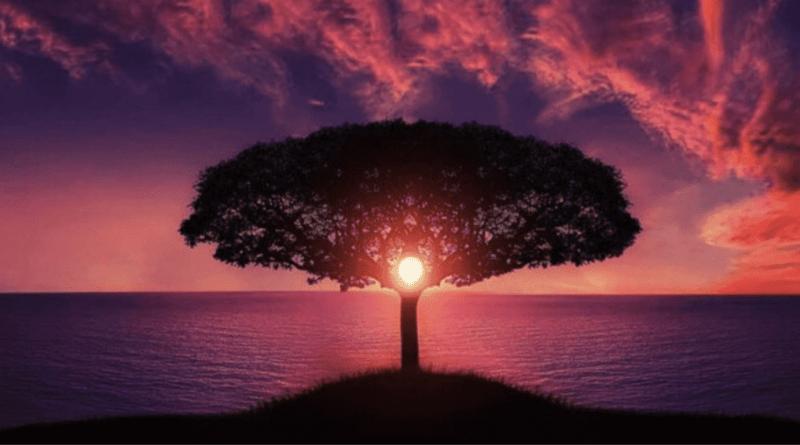 DÜNYA HAYATININ TEKRARI VARMI /// Is there a repetition of world life